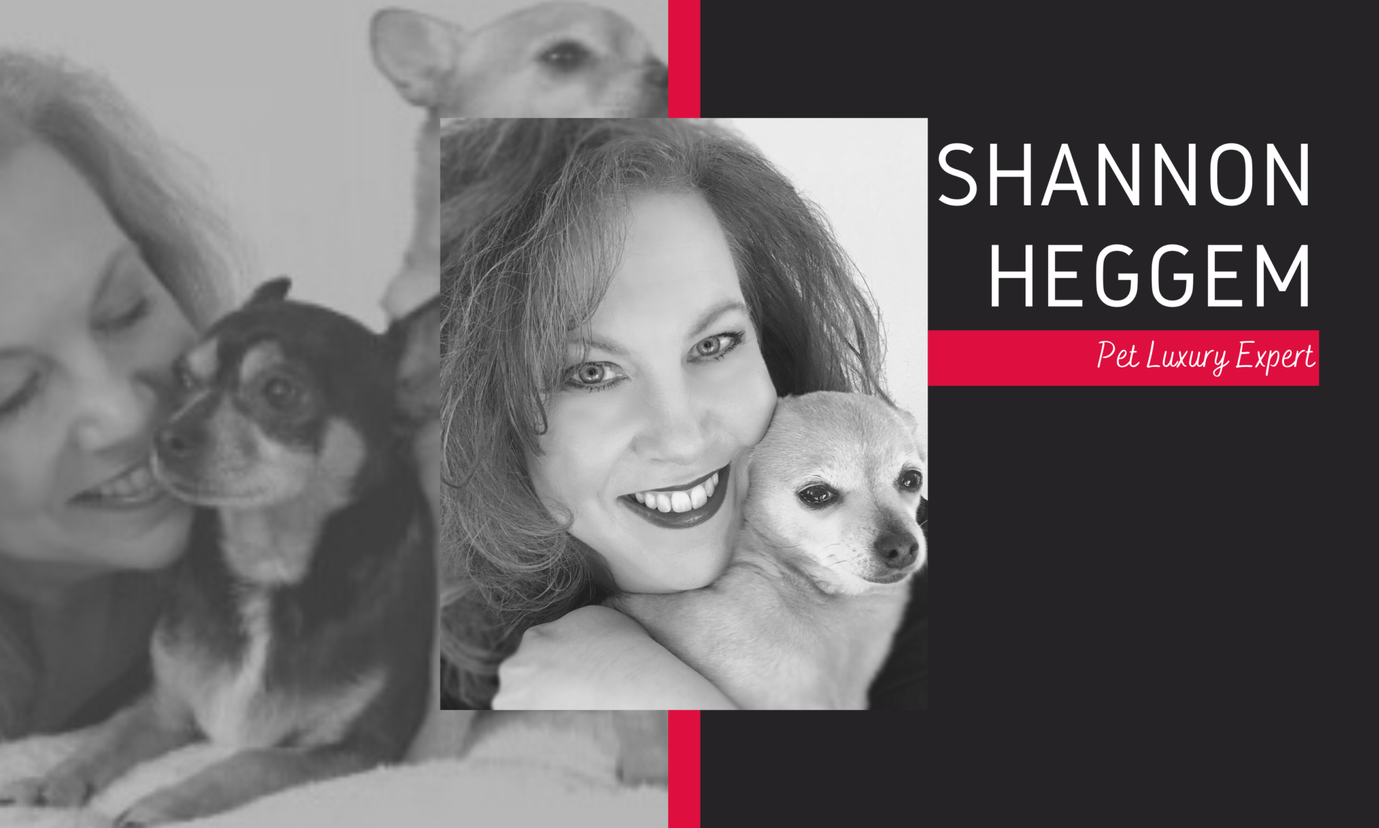 Shannon Heggem-Luxury Pet Expert